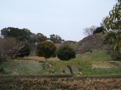 駐車場から東出丸と三の丸の石垣を望む