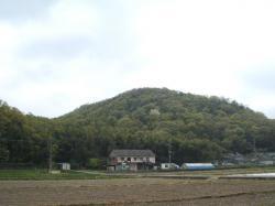 北西から明禅寺城を望む