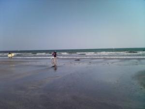 22日の由比ガ浜