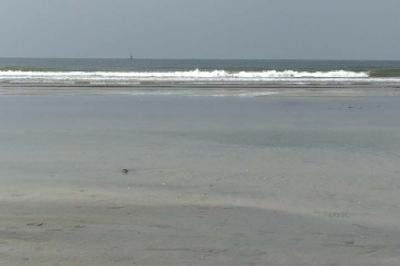 浜辺の静止画