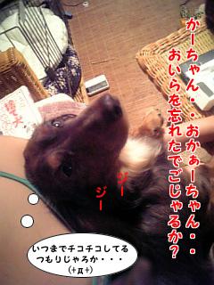 060731_224005_M.jpg