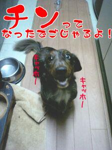 060830_195410_M.jpg