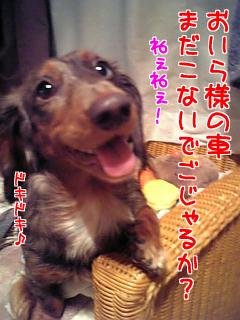 060923_001832_M.jpg