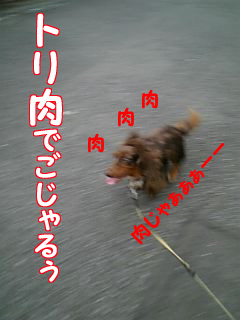 061005_074700_M.jpg