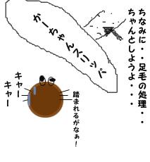 0_12.jpg