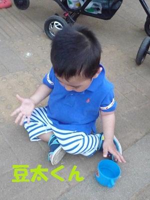 P1030488_20110722165037.jpg