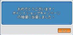 20070228004826.jpg
