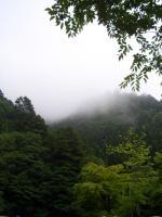 き、霧?!