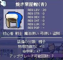 20070228024252.jpg