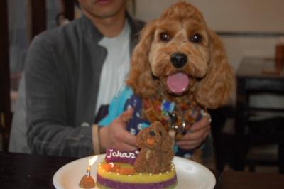 ケーキとjohan♪