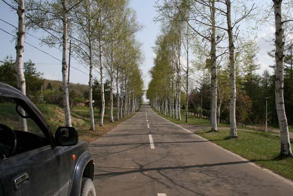 IMG_road.jpg