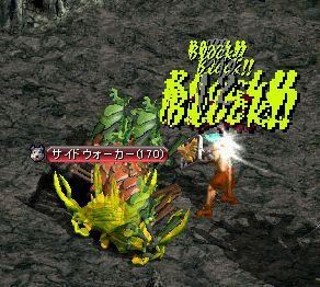 20061024015.jpg