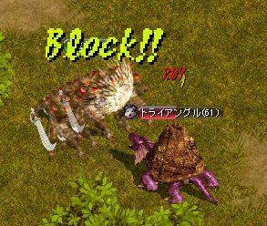 20061227009.jpg
