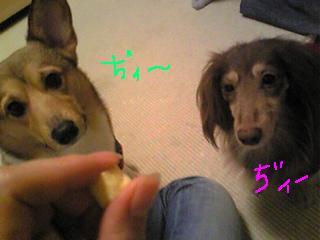 20061225010453.jpg