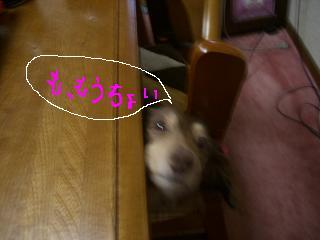 20070104235758.jpg