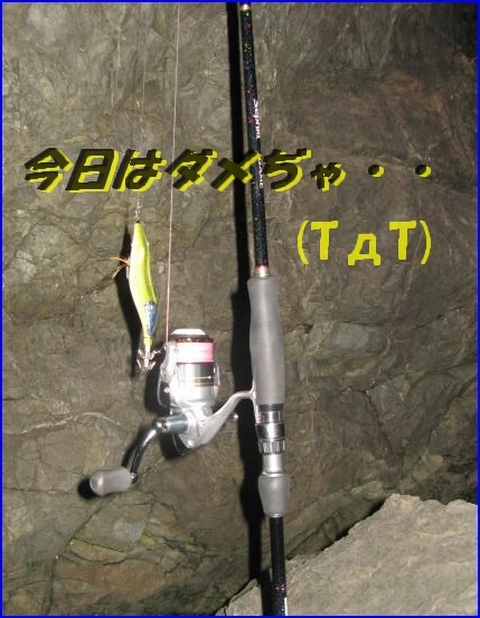 2012114 お手上げ