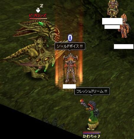 0503_C6DB.jpg