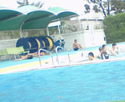 20070811.jpg