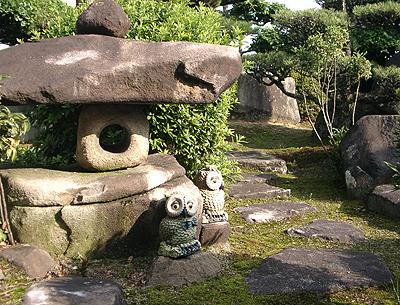 私の家の庭は日本庭園なのか?
