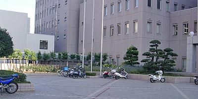 市役所裏の広場