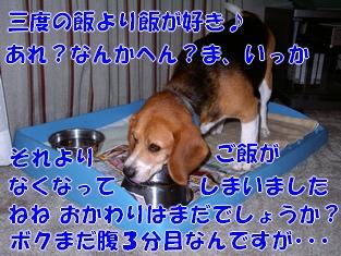 20120121_3.jpg