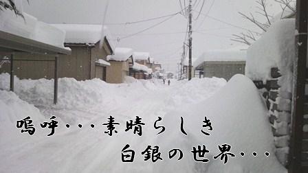 20120129_1.jpg