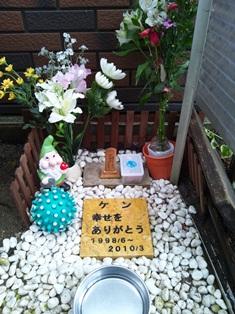 20120303_1.jpg