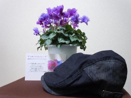 DSCN5466.jpg