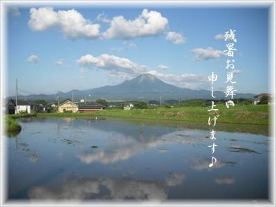 2011-zansyo.jpg
