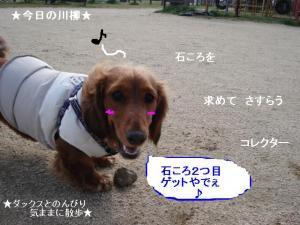 20070224113054.jpg