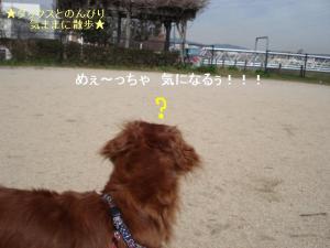 20070303094408.jpg