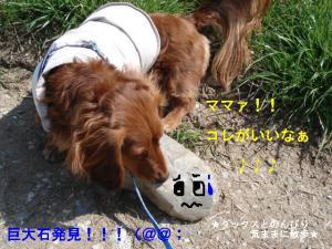 20070310115447.jpg