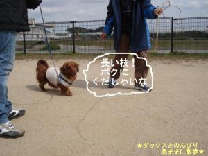 20070320102444.jpg