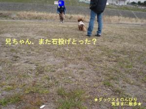 20070324204324.jpg