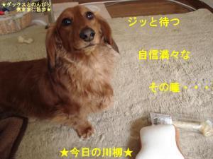 20070410094948.jpg
