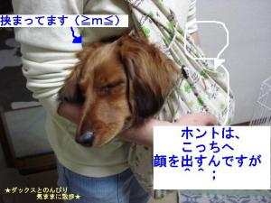 20070424090713.jpg