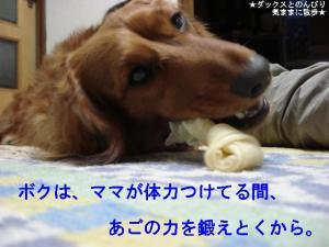 20070501094648.jpg