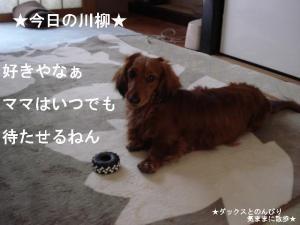 20070502100511.jpg