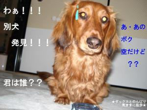 20070502100609.jpg