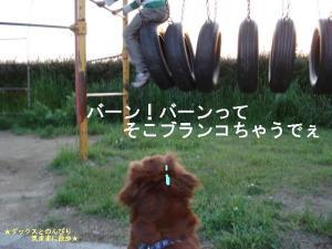 20070510091921.jpg