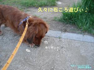 20070510092717.jpg