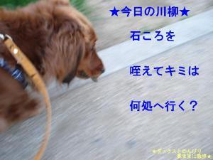 20070510093634.jpg