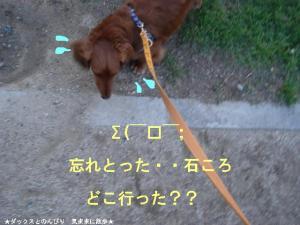 20070511100353.jpg