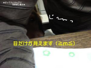 20070518092856.jpg