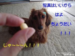 20070520164703.jpg