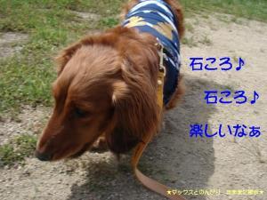 20070523225548.jpg