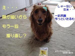 20070526010325.jpg