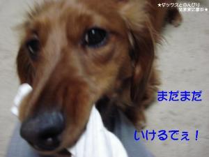 20070528232023.jpg