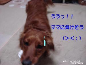 20070528232458.jpg