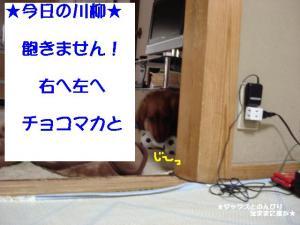 20070608093727.jpg